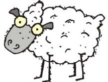 sheep dumb
